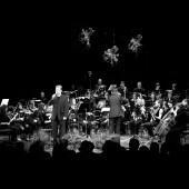 Godalni orkester GŠ Zagorje, 2013. Foto: Vukašin Šobot