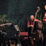 Jure Tori Trio, 2014.  Foto: Smiljan Keršnik
